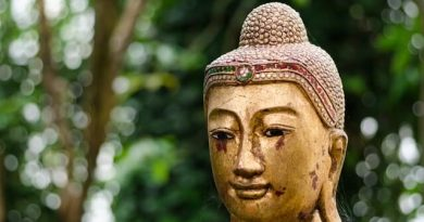 How Does Reincarnation Work in Buddhism? Process + Stages Explained