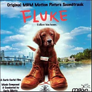 Fluke movie