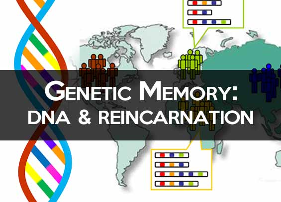 Genetic Memory and Reincarnation