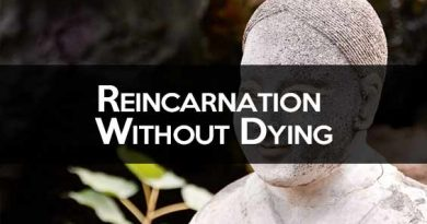Reincarnation Without Death: The Reality of Reincarnation