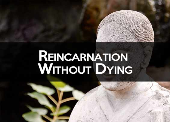 Reincarnation without death